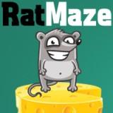 Rat Maze