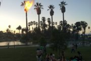 A PALM  TREE CATCHES FIRE @ ECHO PARK LAKE 7/4/14