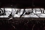 U2_at_Rose_Bowl-2
