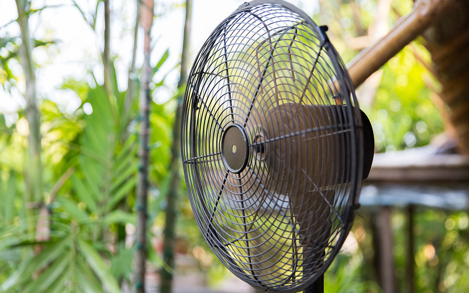 Can Fans Repel Mosquitoes?
