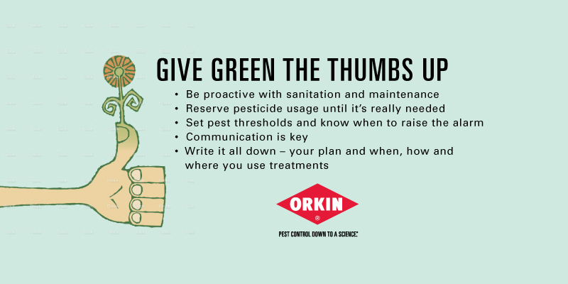 Green Thumb Property Management Graphic