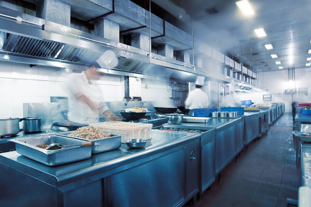 Fly Activity to Look for – and Prevent – in Food Handling Environments