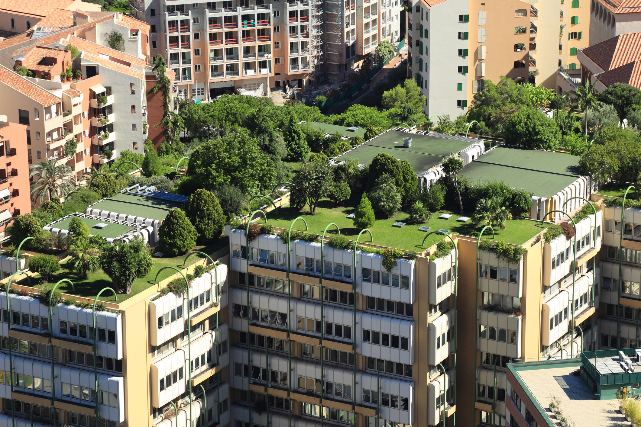apartment green roofs