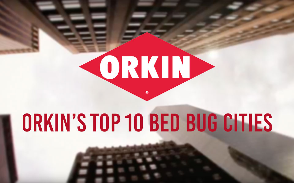 Sleep Tight: Orkin's 2018 Top Bed Bug Cities