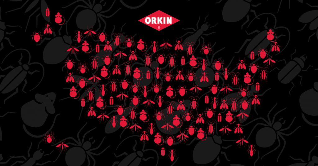 Orkin's State-by-State Guide to Pest Disclosures