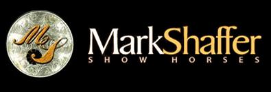 Mssh logo