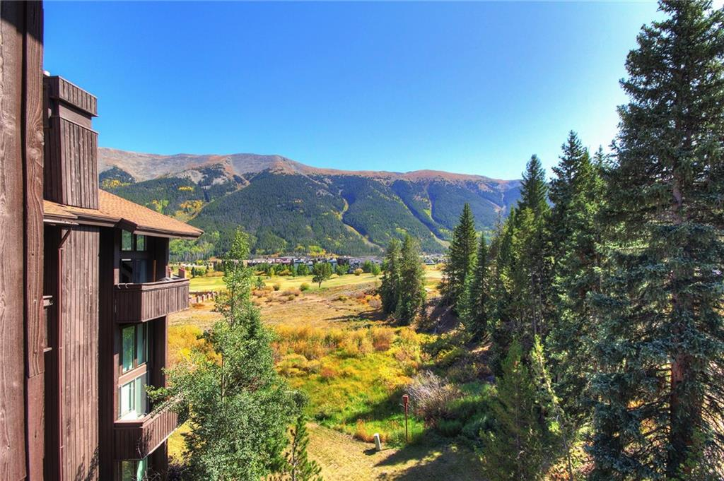 Image - 78  Guller Road  306, Unit 306 Copper Mountain, CO 80443 - MLS# S1024326