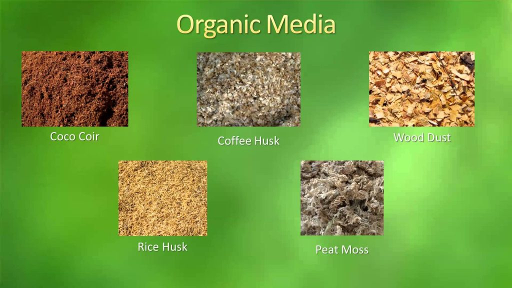 Hydroponics and Media used