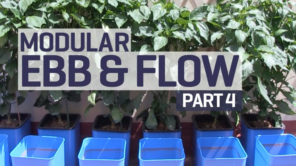 How to set up an Ebb & Flow / Flood & Drain Hydroponics Growing System – Nutrients – PART 4 of 6