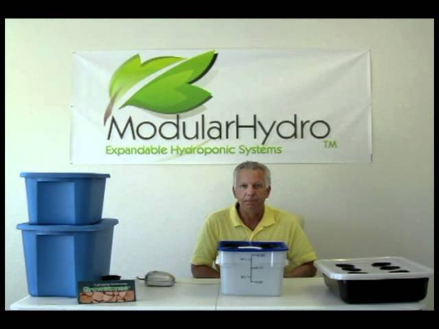 Deep Water Culture (DWC) Hydroponics System Explained