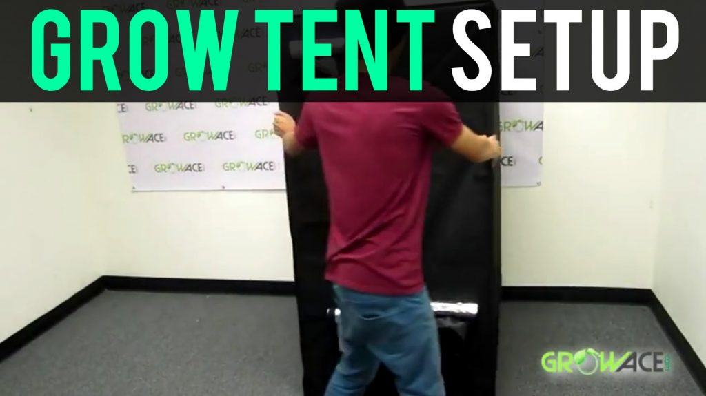 GrowAce.com – Grow Tent Setup Hydroponics GrowAce.com