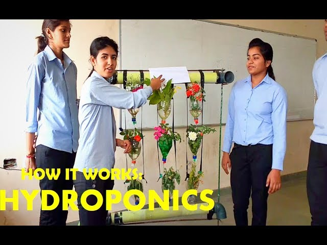 How to make HYDROPONICS | Easy and simple engineering project |