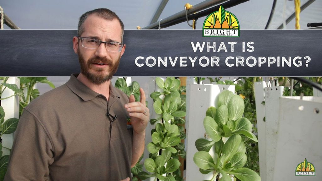 Conveyor Cropping in Hydroponics