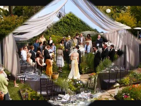 Backyard Wedding Ideas On A Budget | wedding planning
