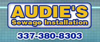 Website for A.S.I. Audie's Sewage Installation