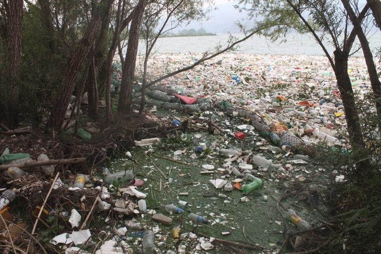 """Fiscal de Delitos Ambientales: """"Las penas son muy leves para el gran daño que se causa"""""""