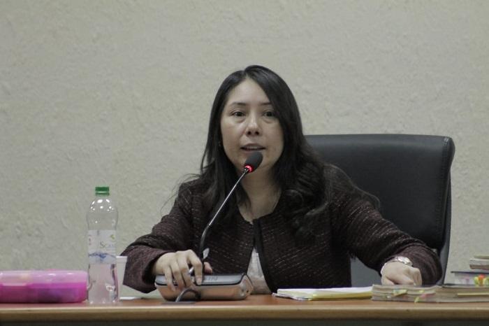 Resultado de imagen para jueza Erika Aifán
