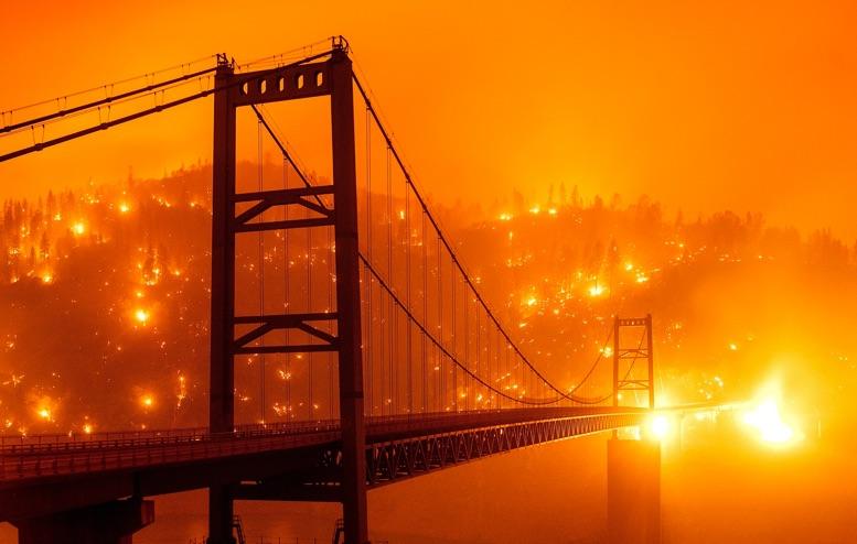En fotos: incendios devastan bosques en California