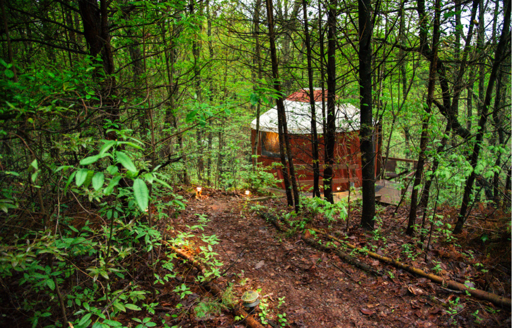 yurt-hotel-in-forest-1