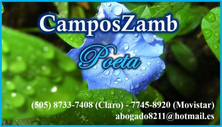 CamposZamb - Poeta - 23-12-2014.png