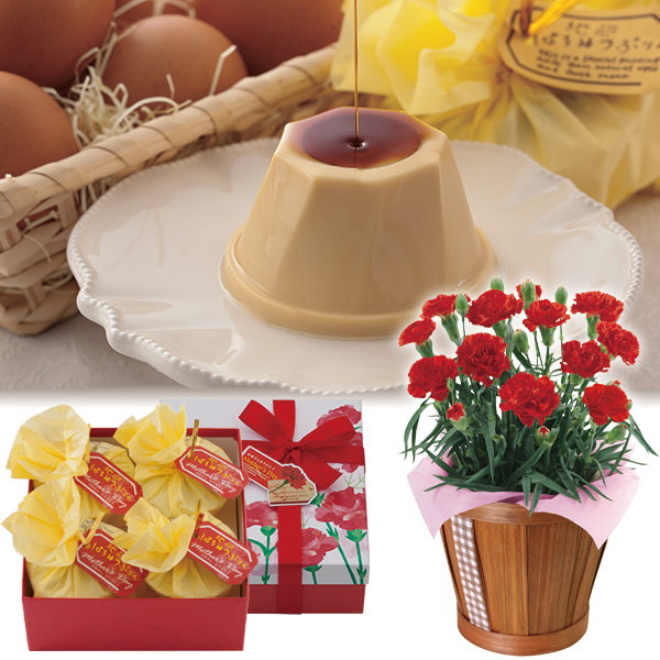 【母の日ギフト】ミニカーネーションレッド4号&地卵はちみつぷりんセット