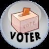 Politics_voter