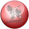 Badge_capoeirista