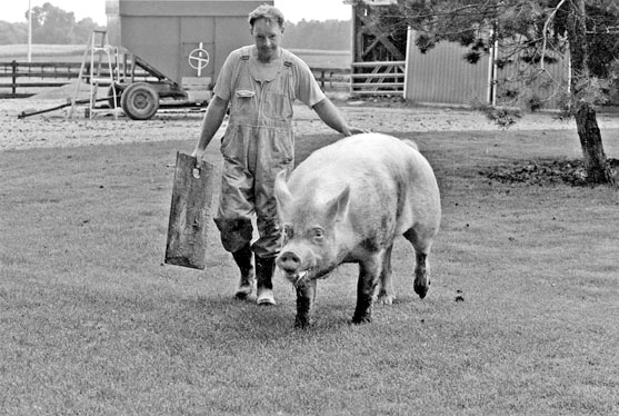 Jack Geerts with boar