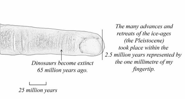 Finger representing timeline