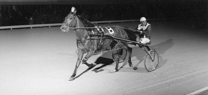 Ron Ellerker with Derby Dan