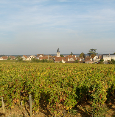 Beaune: In the heart of Burgundy