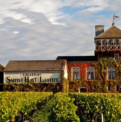 Bordeaux: Château Smith Haut Lafitte