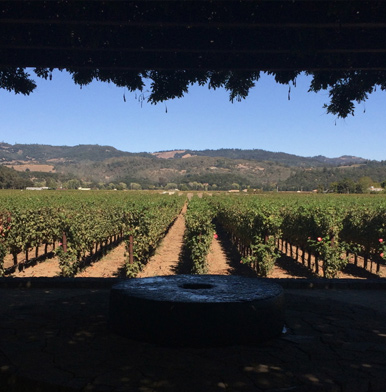 Heitz Wine Cellars: tradition without opulence in winemaking Napa Valley