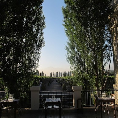 Mendoza: feed your senses where Andes meet the vines of Argentina