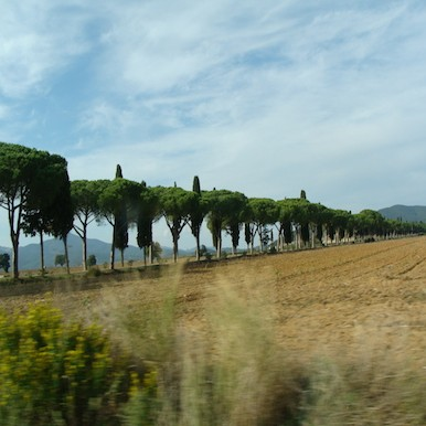 L´Andana: the shrine of calm and relaxation in coastal Tuscany