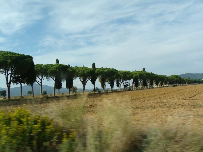 Entrance to  L´Andana in Tuscany