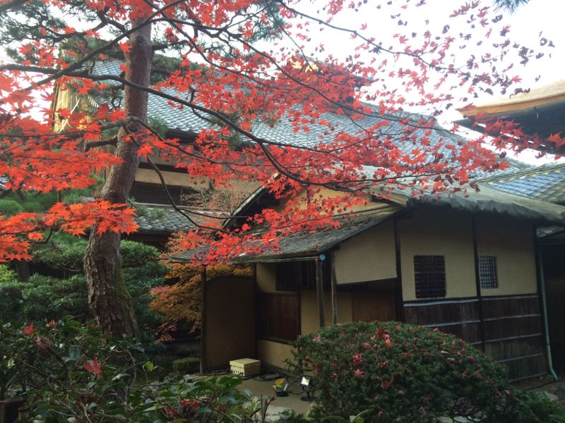 Teahouse and changing leafs in Japan