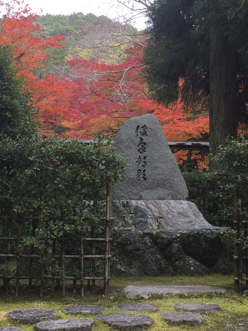 Leafs changing colours in Japanese garden