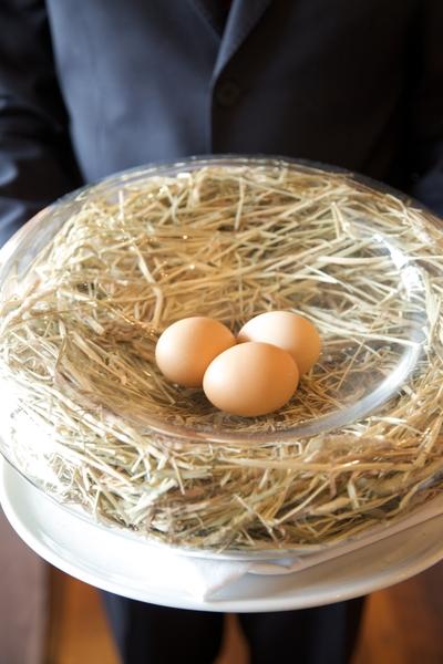 Eggs from Stone Barns farm