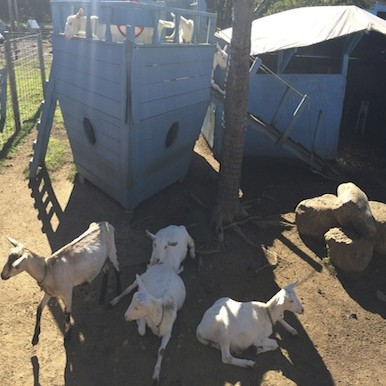 North Fork: touring family farms on the tip of Long Island