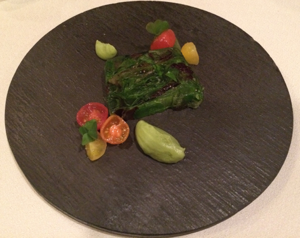 Vegetarian organic gastronomy