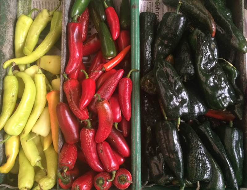 Types of Mexican peppers