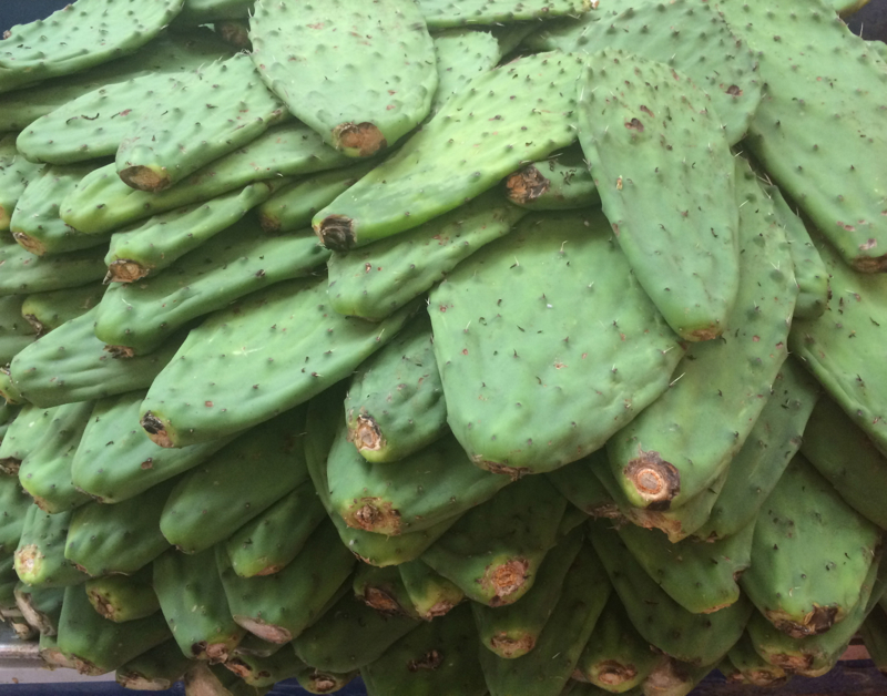 Mexican cacti fruit