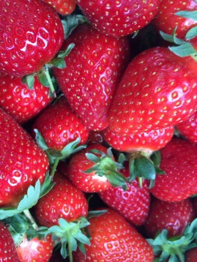 ripe strawberries from the farmers market