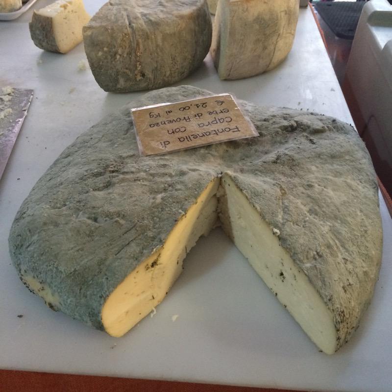 mountain cheese