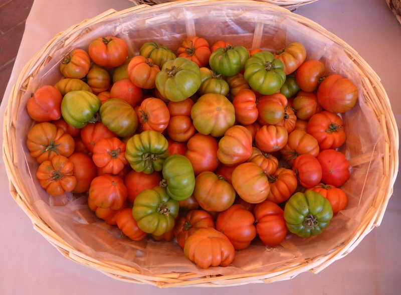 Colourful tomatoes