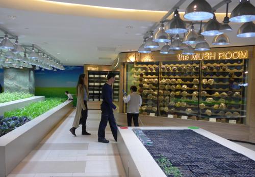indoor vegetable garden in China