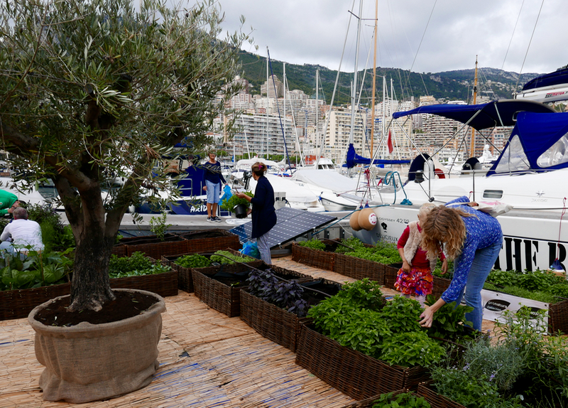 route-du-gout-organic-fair in Monaco