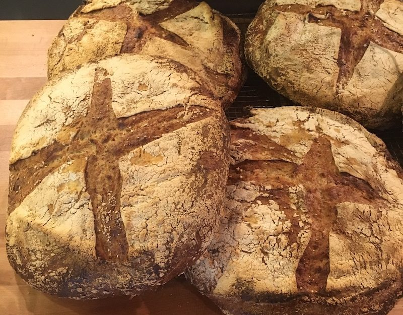 Whole grain kernza bread made from perennial grain