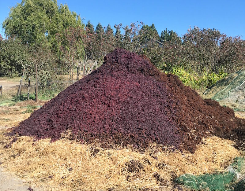 Biodynamic compost